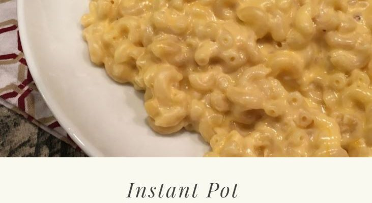 Instant Pot Macaroni & Cheese Recipe {so creamy and delicious}